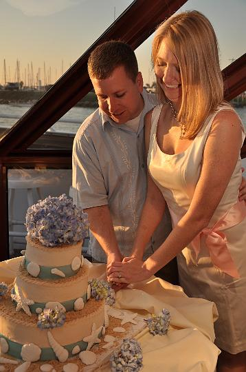 Todd & Heather's Cake