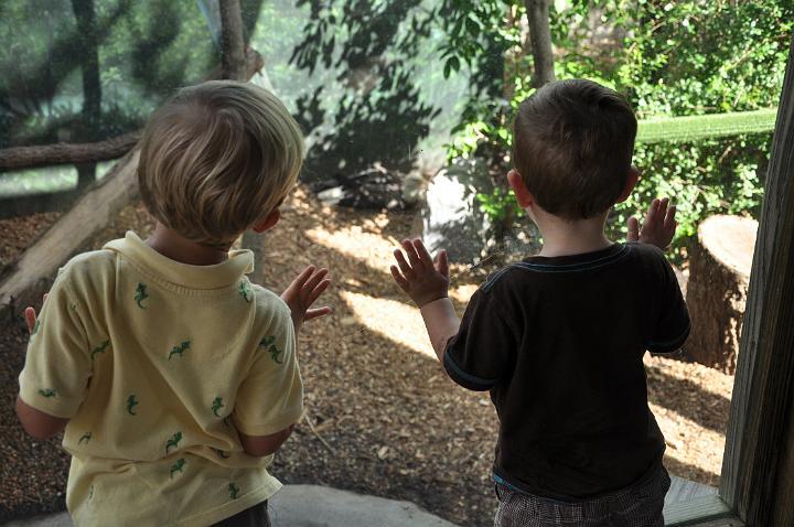 Carter and Jackson